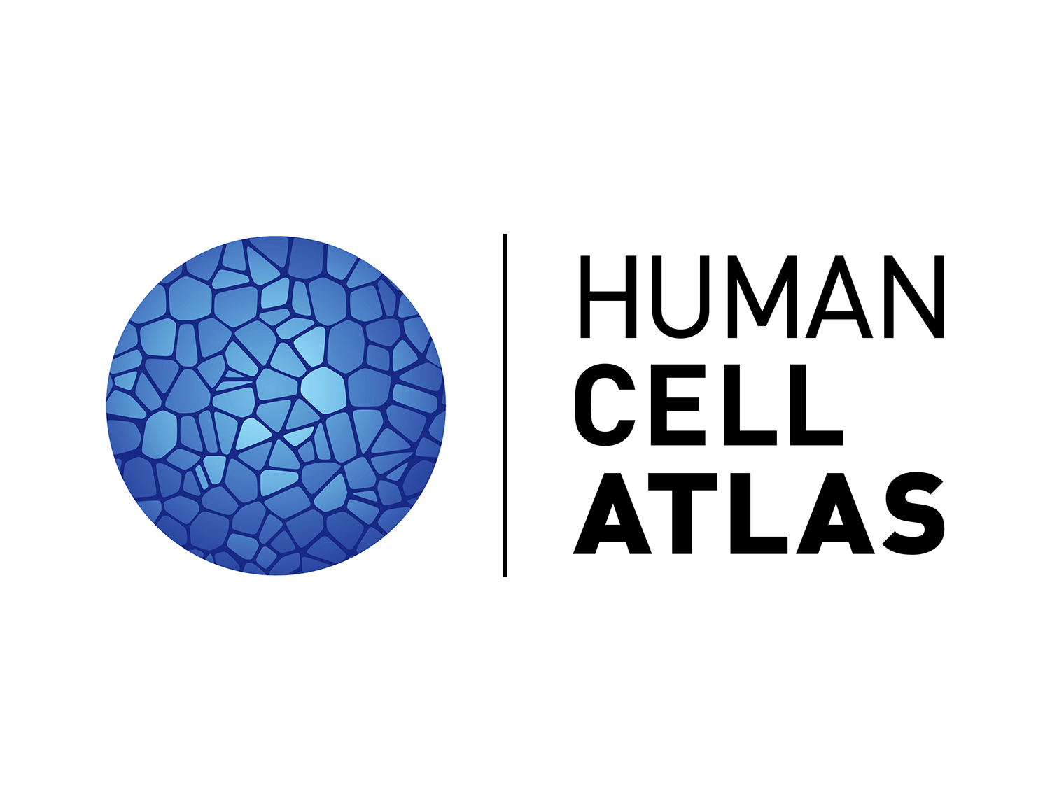Nature Human Cell Atlas